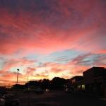 cadmus pink sunset nc